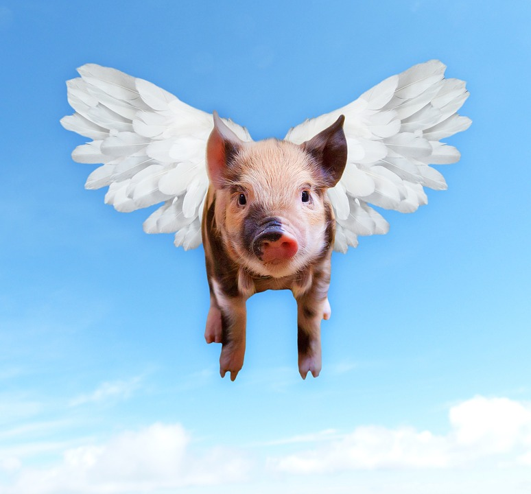 So Pigs Do Fly: Microsoft Acquires GitHub – tecosystems